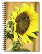 Giant Sunflower With Buds Spiral Notebook