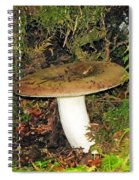 Giant Toad Stool Spiral Notebook
