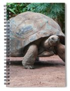 Giant Turtle Spiral Notebook