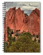 Giants Among The Trees Spiral Notebook