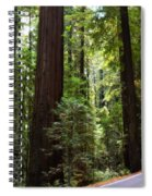 Giants And The Road Spiral Notebook