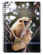 Gibbon On A Swing Spiral Notebook
