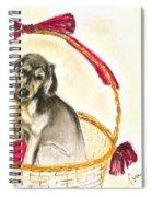Gift Basket Spiral Notebook
