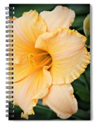 Gild The Lily Spiral Notebook