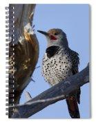 Gilded Flicker Spiral Notebook