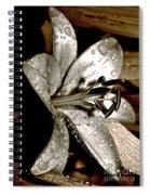 Gilded Lilies 3 Spiral Notebook