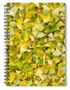 Ginkgo 2 Spiral Notebook
