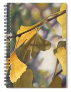 Ginkgo Gold Spiral Notebook