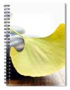 Ginkgo Leaf  Spiral Notebook