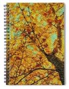 Ginkgo Tree  Spiral Notebook