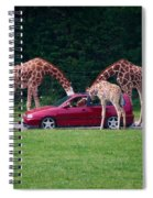 Giraffe. Animal Studies Spiral Notebook