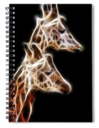 Giraffe Duo Fractal Spiral Notebook