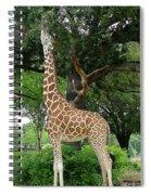 Giraffe Eats-09053 Spiral Notebook