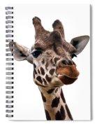 Giraffe  Spiral Notebook