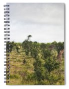 Giraffe Panorama Spiral Notebook
