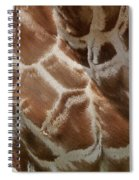 Giraffe Patterns Spiral Notebook