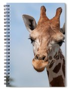 Giraffe Portrait Spiral Notebook