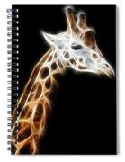 Giraffe Portrait Fractal Spiral Notebook