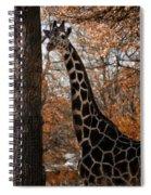 Giraffe Posing Spiral Notebook