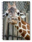 Giraffe-really-09025 Spiral Notebook