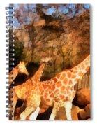 Giraffes At The Zoo Spiral Notebook