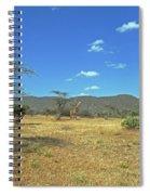 Giraffes In Samburu National Reserve Spiral Notebook