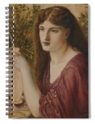 Girl At A Fountain Spiral Notebook