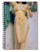 Girl With A Mirror Spiral Notebook