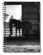Girl With Horse Spiral Notebook