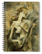 Girl With Mandolin Spiral Notebook