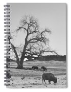 Give Me A Home Where The Buffalo Roam Bw Spiral Notebook