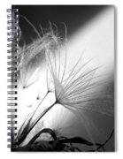 Give Me Light... Give Me Life Spiral Notebook