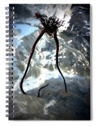 Giving Way To Winter Spiral Notebook