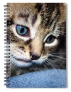 Gizmo Feeling Blue Spiral Notebook