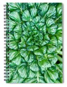 Glabrous Leaves Spiral Notebook