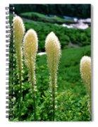 Glacier Beargrass Swiftcurrent Pass Spiral Notebook