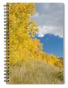 Glacier Fall Color Ridge Spiral Notebook