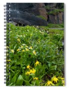 Glacier Lilies And Globeflower Beside A Mountain Stream Spiral Notebook