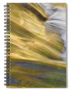 Glacier Stream Glacier National Park Spiral Notebook