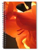 Gladiola Close Up 3 Spiral Notebook
