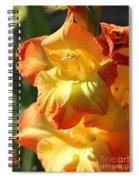Gladiolus Named Halloween Spiral Notebook