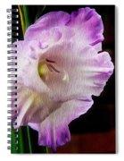 Gladiolus - Summer Beauty Spiral Notebook