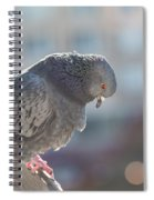 Glance From Above Spiral Notebook