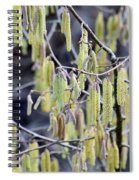 Glance In The Woods Spiral Notebook