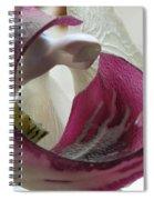 Glass Beauty Spiral Notebook