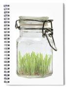 Glass Jar Spiral Notebook