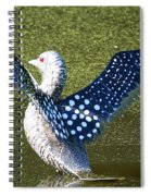 Glass Loon Spiral Notebook