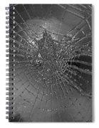 Glass Spider Spiral Notebook