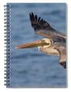 gliding by Pelican Spiral Notebook