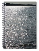 Glittering Spiral Notebook